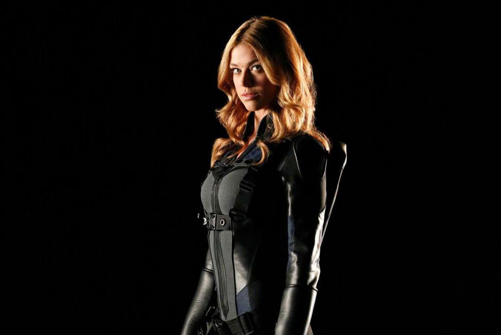 Après avoir failli incarner Wonder Woman et Gamora, Adrianne Palicki décroche finalement le rôle d'une autre femme célèbre des comics : Bobbi Morse, alias Mockingbird.