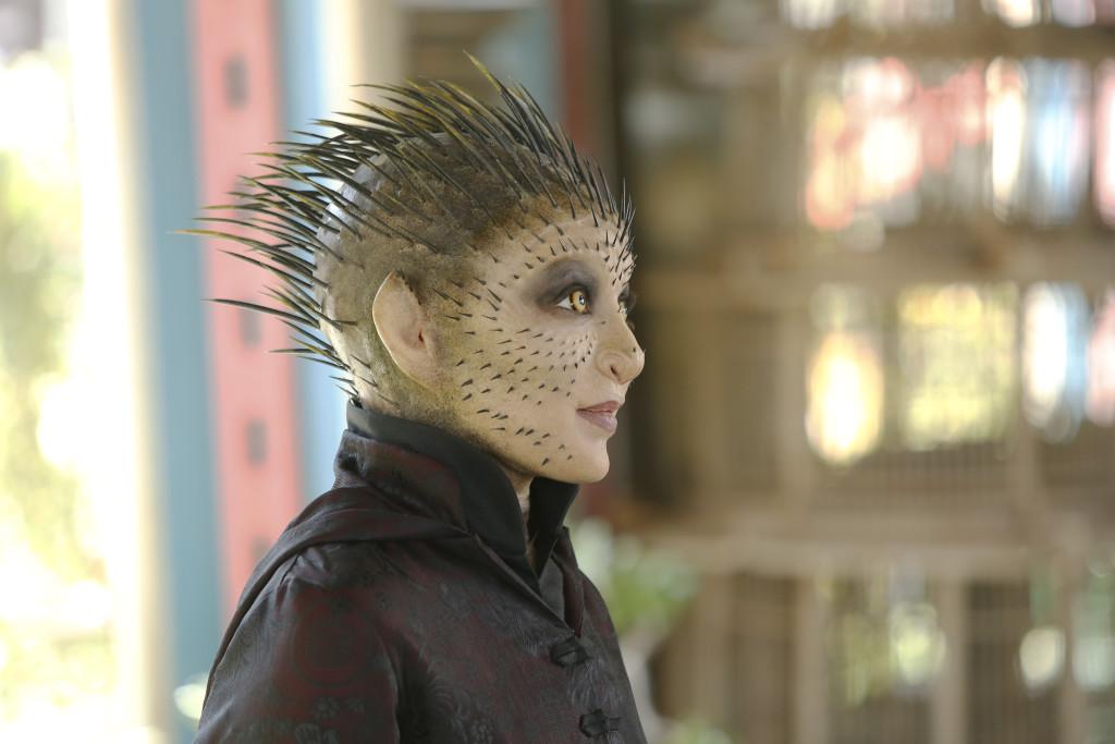 Durant la deuxième saison, la série grille la politesse au pôle ciné en introduisant pour la première fois les Inhumans dans le MCU (ici, Raina, incarnée par Ruth Negga).