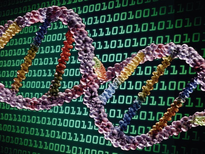 stockage_dna