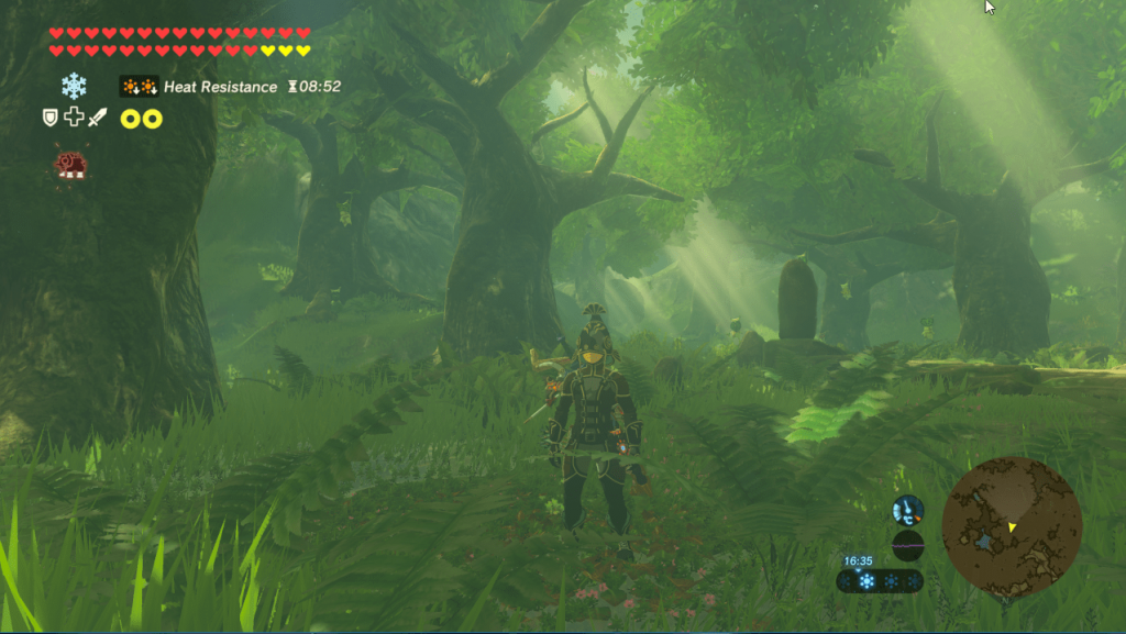 Zelda BotW Cemu Speed Secret Forest