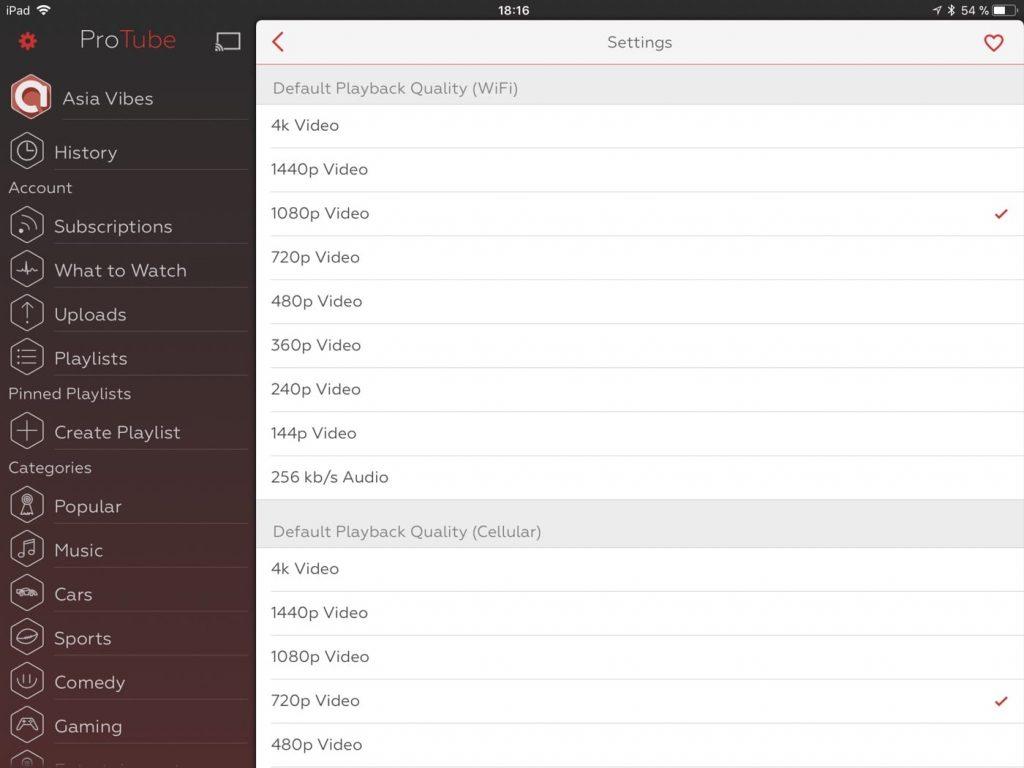 ProTube iPad 2
