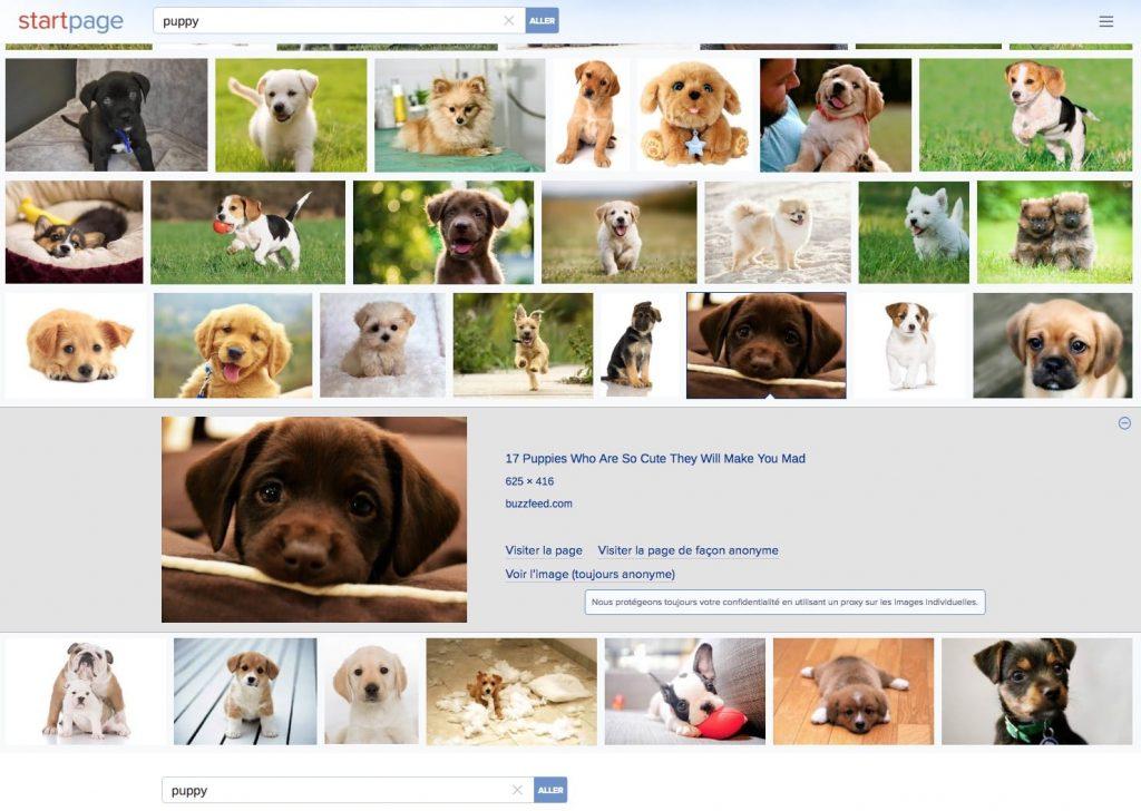StartPage Images