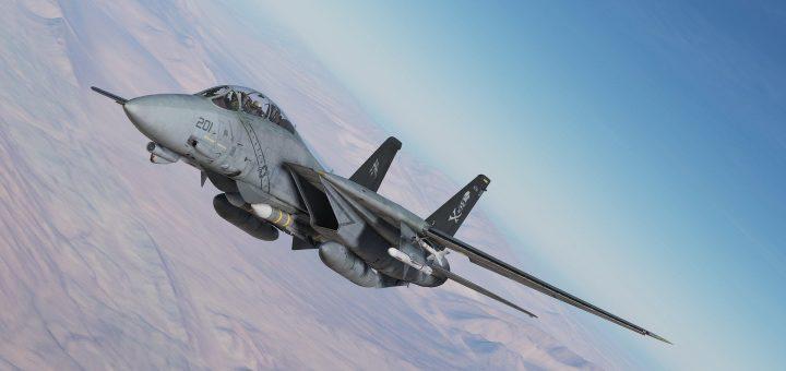 F14 DCS